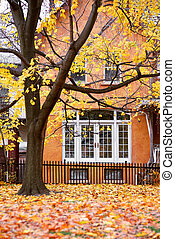 House autumn - Residential house and tree in the fall