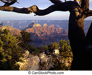 GrandCanyonNorthRim1 - The Grand Canyon, in Grand Canyon...