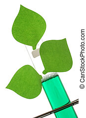 Test Tube with Leaves - Test tube in rack with green leaves...