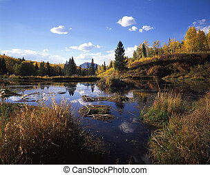 GunnisonWetlands - A wetland area in the Gunnison National...