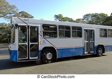 sydney bus - white/blue sydney bus with driver, without...