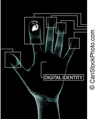 Digital identity - A hand with personel info scanned