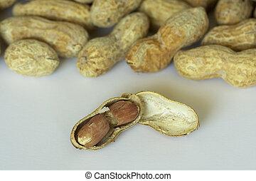 open peanut shell exposing nuts