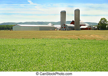 green field and farm - farm buildings with silos and barns...