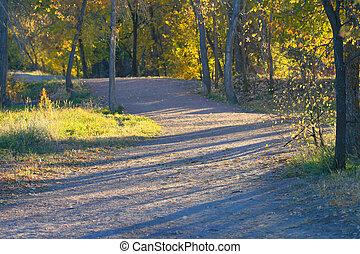 Path Shadows - Early morning light creates dramatic shadows...