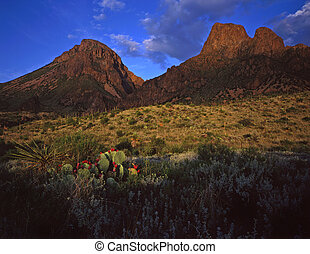ChisosMtns and Desert - The Chisos Mountains in Big Bend...