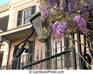 Gas Lamp Wisteria on Battery, Charleston, SC