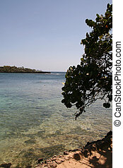 Roatan Honduras Coastline - Beach View at Half Moon Bay -...