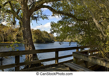 Suwannee River Boardwalk - The peaceful boardwalk on the...