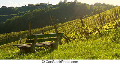 on a bench - bench at a vineyard on romantic affection