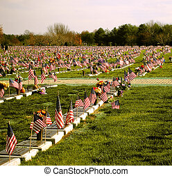 Veterans\\\' Cemetary - Flag and graves at the Delaware...