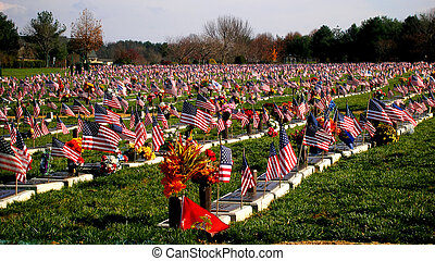 Veterans Cemetary - Flag and graves at the Delaware Veterans...
