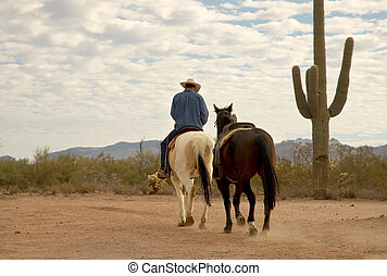 Cowboy - Early morning arizona cowboy leading a horse out on...