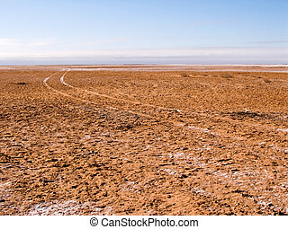 Driving on the lake bed - Vehicle tracks on the dry bed of...