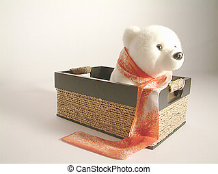 polarbear - polar bear in a wooden box
