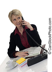 phone - young business woman on the phone in office