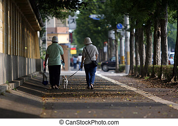 Walk - Japanese women walking the dog - picture taken in...
