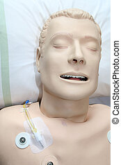 Life Support Dummy - Dummy used for first aid life support...