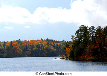 Autumn lake - Lake and forest in the fall in northern...