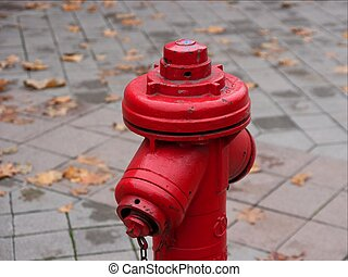 Hydrant - top of a red fire hydrant in the street