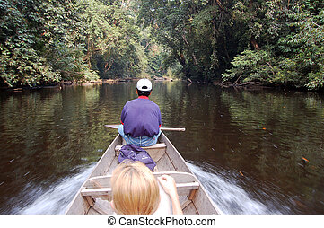 Speed on the river - Boat on the river - Taman Negara...