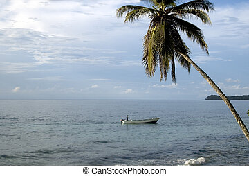 TROPICAL SEA VIEW - caribbean scene boat in sea with one...