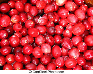 Cranberries - Closeup of cranberries.