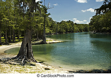 River Beach - The beach on the Santa Fe River near Branford,...