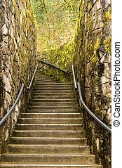 Staircase in moss