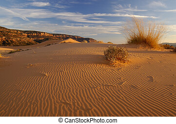Coral Pink Sand Dunes And Ripples - Coral Pink Sand Dunes at...