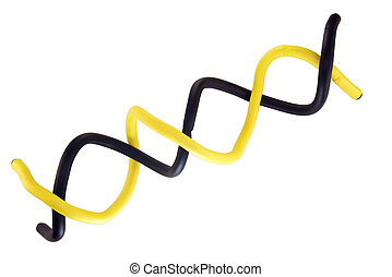 Double Helix in yellow and black, on a white background