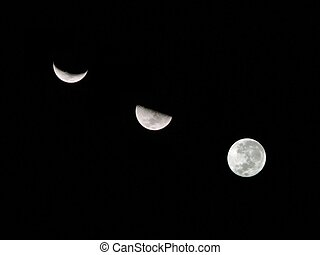 Moon Composite - A composite of the different phases of the...