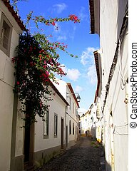 Street with flowers - Situated street with flowers in the...