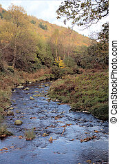 Wicklow 2 - Nature\\\'s beauty