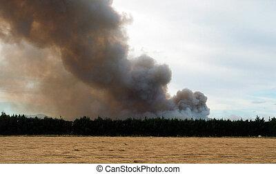 Large bonn fire - Large Bonn fire, Darfield, New Zealand