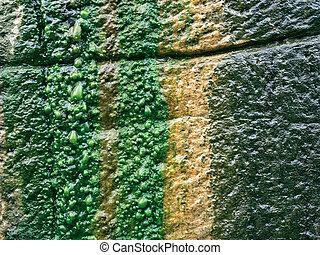 Wet slimy rock wall - Backgroundtextural image of water...