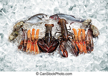 Seafood on ice - Some seafood on ice