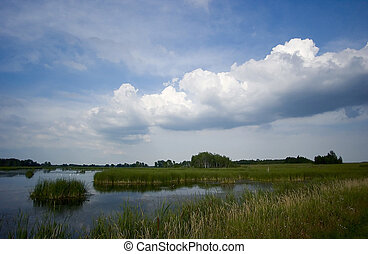 Horicon Marsh, Wisconsin - Beautiful day at Horicon Marsh in...