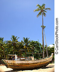 Ship wreck - wreck of a rusty fishing boat on a tropical...