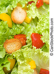 Salad closeup - Batavian lettuce with tomatoes, peppers and...