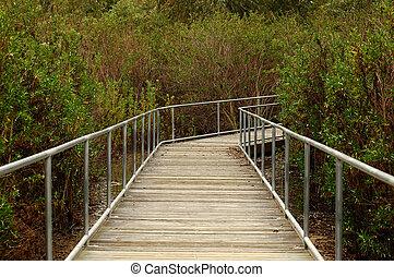 Marsh Walkway - Man-made elevated walkway through nature...