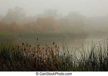 Misty pond - Misty Autumn Pond with birds in flight
