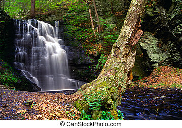 Bushkill Waterfall - One of many waterfalls in Bushkill...
