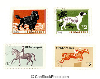 Old postage stamps with dogs and horses - Collectible stamps...