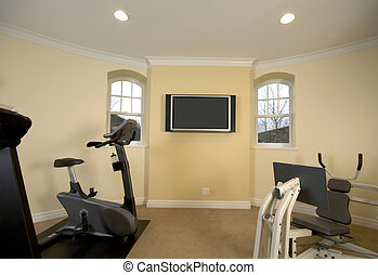 home gymnasium with televison in mansion private residence