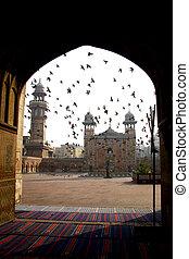 Masjid Wazir Khan - Birds hovering at the exterior of Masjid...