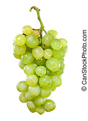 Bunch of white grapes with drops of water