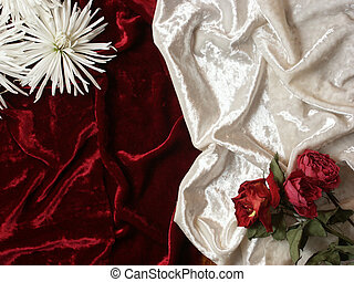 dead flowers on velvet background - red and white velvet...