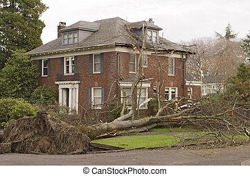casa, con, árbol, daño
