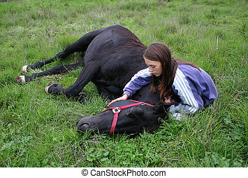 laid down horse - teenager and her black stallion laid down,...